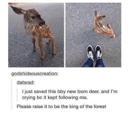 Deer, Memes, and Flower: godshideouscreation:  datsrad:  I just saved this bby new born deer and I'm  crying bo it kept following me.  Please raise it to be the king of the forest all it needs is a flower crown and omf my heart - Max textpost textposts
