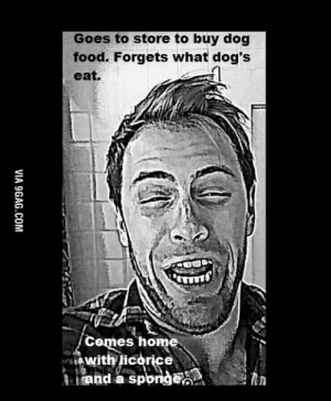 Idiot Husband Meme - 9GAG: Goes to store to buy dog  food. Forgets what dog's  eat.  Comes home  with licorice  and a sporge  VIA 9GAG.COM Idiot Husband Meme - 9GAG