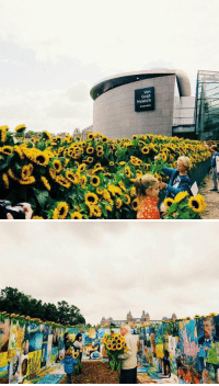 Van Gogh Museum, surrounded by 125k sunflowers. Everyone was allowed to take them home as many as they wanted to: Gogh  Museum   simest: Van Gogh Museum, surrounded by 125k sunflowers. Everyone was allowed to take them home as many as they wanted to