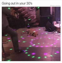 Funny, Animal, and Cool: Going out in your 30's  @tank.sinatra 22 Cool Animal Pictures From This Week That Are Actually Funny