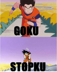 """Goku, Lol, and Memes: GOKU  STOPKU lol everyone should understand this - """"In order to attain the impossible, one must attempt the absurd."""" - Miguel de Cervantes"""