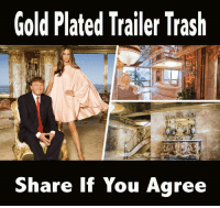 Trash, Gold, and Class: Gold Plated Trailer Trash  Share If You Agree Because you can't buy class!