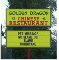Lmao, Memes, and Pets: GOLDEN DRAGON  CHINESE  ib  PET MISSING?  NO BLAME US!  BLAME  HURRICANE LMAO THATS RACIST