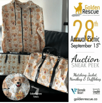 """Memes, Email, and Information: Golden  Rescue  ...About Second Chances  28  Annual Picnic  September 15h  Auction  SNEAK PEEK  Matching Jacket.  Handbag &Dufflbag  iamede Sgononed By  esort  Golden Refthever  Pattern  FITNESS  goldenrescue.ca Picnic Auction Sneak Peek! This """"Golden"""" themed matching  jacket, handbag and duffle bag was donated by Jody Johnson and is just one of the many incredible items up for auction at this year's picnic. Make sure you're there so you don't miss out! For more information about our Annual Picnic, please visit our website: https://www.goldenrescue.ca/events/golden-rescue-annual-picnic-2018/ To donate an auction item, please email sa@goldenrescue.ca  #goldenretriever #rescuedog #adoptdontshop"""