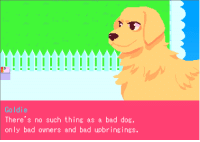 Bad, Dos, and Thing: Goldie  There's no such thing as a bad dos  only  bad owners and bad upbringings.