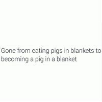 Pigly: Gone from eating pigs in blankets to  becoming a pig in a blanket