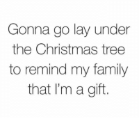 Christmas, Family, and Christmas Tree: Gonna go lay under  the Christmas tree  to remind my family  that I'm a gift