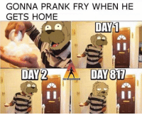 If I have to be sad about this you have to be sad about this too The Homeless Network: GONNA PRANK FRY WHEN HE  GETS HOME  DAY 1  a a  DAY 2 DAY 817 If I have to be sad about this you have to be sad about this too The Homeless Network