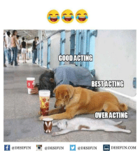 Memes, Good, and Acting: GOOD ACTING  BESTACTING  OVERACTING  @DESIFUN@DESIFUN  @DESIFUN  İ DESIFUN.COM desifun