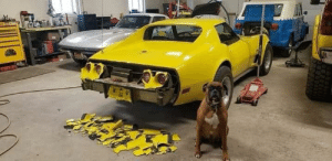 Good boy does some body work on a third-generation Corvette, the second-gen in the background maybe next: Good boy does some body work on a third-generation Corvette, the second-gen in the background maybe next