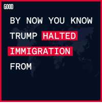 GOOD  BY NOW YOU KNOW  TRUMP HALTED  IMMIGRATION  FROM FYI