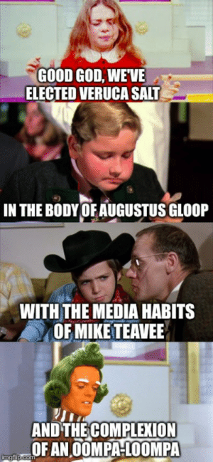 God, Memes, and Gifs: GOOD GOD, WEVE  ELECTED VERUCA SALT  IN THE BODY OF AUGUSTUS GLOOP  WITH THE MEDIA HABITS  OF MIKE TEAVEE  AND THECOMPLEXION  OF AN OOMPAHLOOMPA oompa loompa Memes & GIFs - Imgflip