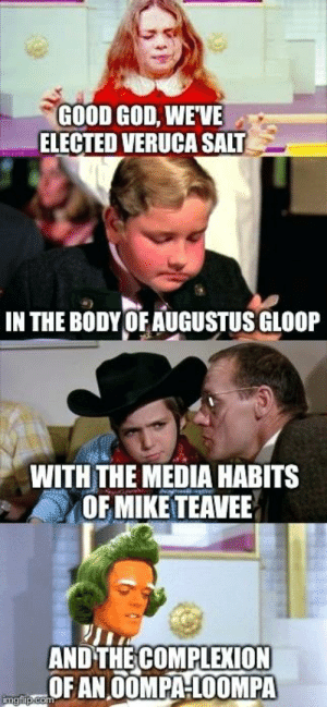 Donald Trump, Funny, and God: GOOD GOD, WEVE  ELECTED VERUCA SALT  IN THE BODYOF AUGUSTUSGLOOP  WITH THE MEDIA HABITS  OF MIKE TEAVEE  AND THE COMPLEXION  OFAN 0OMPA LOOMPA  imgflip.com Donald Trump Vs Oompa Loompa Pin By R U On Politics Funny Memes And ...