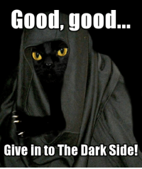Good Good: Good, good...  Give in to The Dark Side!