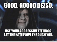 Good Good Let The Hate Flow Through You: GOOD GOOODDELSO  USE YOURAGGRESSIVE FEELINGS.  LETTHE HATE FLOW THROUGH YOU.  memes. COM