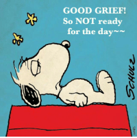 good grief: GOOD GRIEF!  So NOT ready  for the day