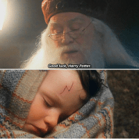 Try to write 'Albus Dumbledore' in the comments with your eyes closed 👀: Good luck,Harry Potter Try to write 'Albus Dumbledore' in the comments with your eyes closed 👀