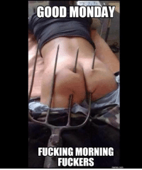 Good morning! MondayGotYaLike: GOOD MONDAY  FUCKING MORNING  FUCKERS  memes.com Good morning! MondayGotYaLike