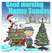 Memes, Peanuts, and And Funny: Good morning  2016 Peanuts Worldwide LLC  by Mike DuBois For more awesome holiday, retro, and funny pictures go to... www.snowflakescottage.com