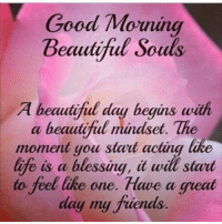 Good morning everyone: Good Morning  Beautiful Souls  A beautiful day begins with  a beautiful mindset. The  moment you start acting like  life is a blessung, it will start  to feel like one. Have a great  day my fuends Good morning everyone