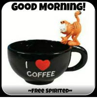 Have a great day!: GOOD MORnING  COFFEE Have a great day!