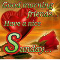Good morning ! TU: Good morning  friends.  Have a nice  unday Good morning ! TU