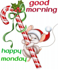 Memes, And Funny, and 🤖: good  morning  happy  monday For more awesome holiday, retro, and funny pictures go to... www.snowflakescottage.com