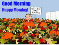 For more awesome holiday and fun pictures go to... www.snowflakescottage.com: Good Morning  Happy Monday!  GREAT  PUMPKIN For more awesome holiday and fun pictures go to... www.snowflakescottage.com