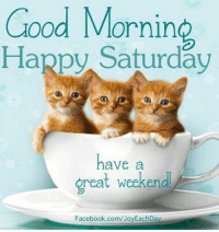 have a good weekend: Good Morning  Happy Saturday  have a  great weekend.  Facebook.com/JoyEachDay