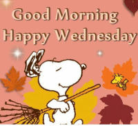 For more awesome holiday and fun pictures go to... 🎃🎃🎃🎃🎃🎃www.snowflakescottage.com: Good Morning  Happy Wednesday For more awesome holiday and fun pictures go to... 🎃🎃🎃🎃🎃🎃www.snowflakescottage.com