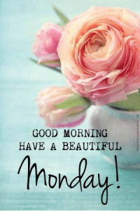 Good Morning Lover Faces!: GOOD MORNING  HAVE A BEAUTIFUL  Monday Good Morning Lover Faces!