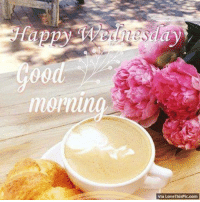 Good morning ! Have a wonderful day !: Good morning ! Have a wonderful day !