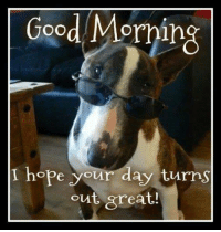 Good Morning  I hope your day turns  out great! Good Morning, I hope your day turns out great !