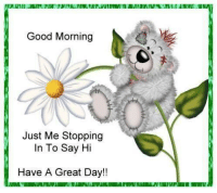 have-a-good-day: Good Morning  Just Me Stopping  In To Say Hi  Have A Great Day!!