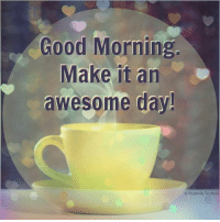 Memes, Good Morning, and 🤖: Good Morning  Make it an  awesome day!  Positivity Toolbox