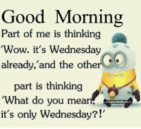 So true ! Tu: Good Morning  Part of me is thinking  Wow. it's Wednesday  already, and the other  part is thinking  What do you mean  Love ThisPic com  it's only Wednesday?!' So true ! Tu