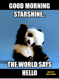 Hello, Memes, and youtube.com: GOOD MORNING  STARSHINE  THE WORLD SAYS  HELLO  ANGRY CITTY  NEEDS A LAUGHll https://www.youtube.com/watch?v=uj72jRFfV6w