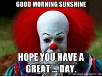 Great Memes: GOOD MORNING SUNSHINE  HOPE YOU HAVE A  GREAT DAY.  memegenerator.net
