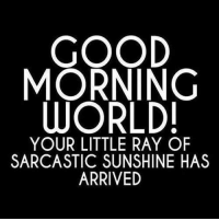 sarcastic: GOOD  MORNING  WORLD!  YOUR LITTLE RAY OF  SARCASTIC SUNSHINE HAS  ARRIVED