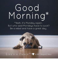 Good Morning. Yeah its Monday again. But who said Mondays have to suck? Be a rebel and have a great day: Good  Morning  *Yeah, it's Monday again  But who said Mondays have to suck?  Be a rebel and have a great day.  LIFE'S A DANCE FB  ,.  O 2017 Margaret B. Moss Good Morning. Yeah its Monday again. But who said Mondays have to suck? Be a rebel and have a great day