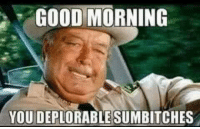 Sumbitch: GOOD MORNING  YOU DEPLORABLE SUMBITCHES