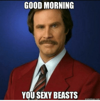 I know it's not morning....but ya'll are a buncha sexy beasts! 😈 it's Friday 😆😆😆😆: GOOD MORNING  YOU SEXY BEASTS  memetogo com I know it's not morning....but ya'll are a buncha sexy beasts! 😈 it's Friday 😆😆😆😆