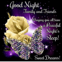 Memes, Good, and Dreams: good Night.  amily and dien  Raying you at have  a  Peaceful  Nights  weet Dreams!