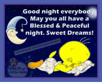 good night: Good night everybody  May you all have a  Blessed & Peaceful  night. Sweet Dreams!  Stil Talking  Uplm  facebook co  SHUT UP