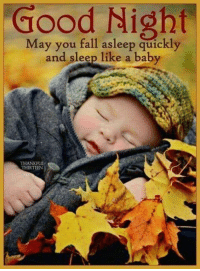 #jussayin: Good  Night  May you fall asleep quickly  and sleep like a baby  THANKFUI  THIRTEEN #jussayin