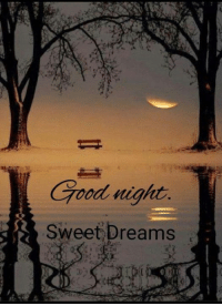 Good evening and Good night Favorite Friends  .. I love you all  ..  See you in the a.m.  ..  <3: Good night  Sweet Dreams Good evening and Good night Favorite Friends  .. I love you all  ..  See you in the a.m.  ..  <3