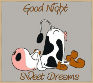 Memes, Good, and Dreams: Good Nopt  Seet Dreams Good Night.. Sweet Dreams.. :) <3