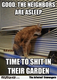 Funny, Memes, and Good: GOOD THENEIGHBORS  AREASLEEP  TIMETO SHITIN  THEIR GARDEN  The Intenet Sawengers <p>Funny weekend memes collection  The guffaws are strong  PMSLweb </p>