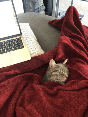 Good things about working from home.: Good things about working from home.