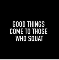 😏💪🏼: GOOD THINGS  COME TO THOSE  WHO SQUAT  SST  GOA  NHU  ITQ  TOS  TO  OEH  OMW  GO 😏💪🏼
